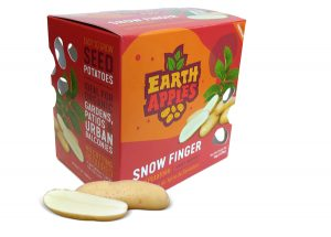 Earth Apples Seed Potatoes - Snow Finger